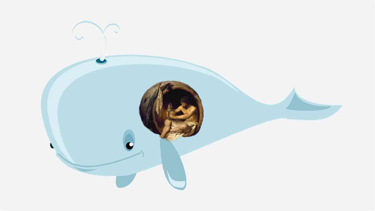 Jona in de walvis