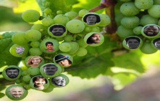 De mens als werker in Gods wijngaard